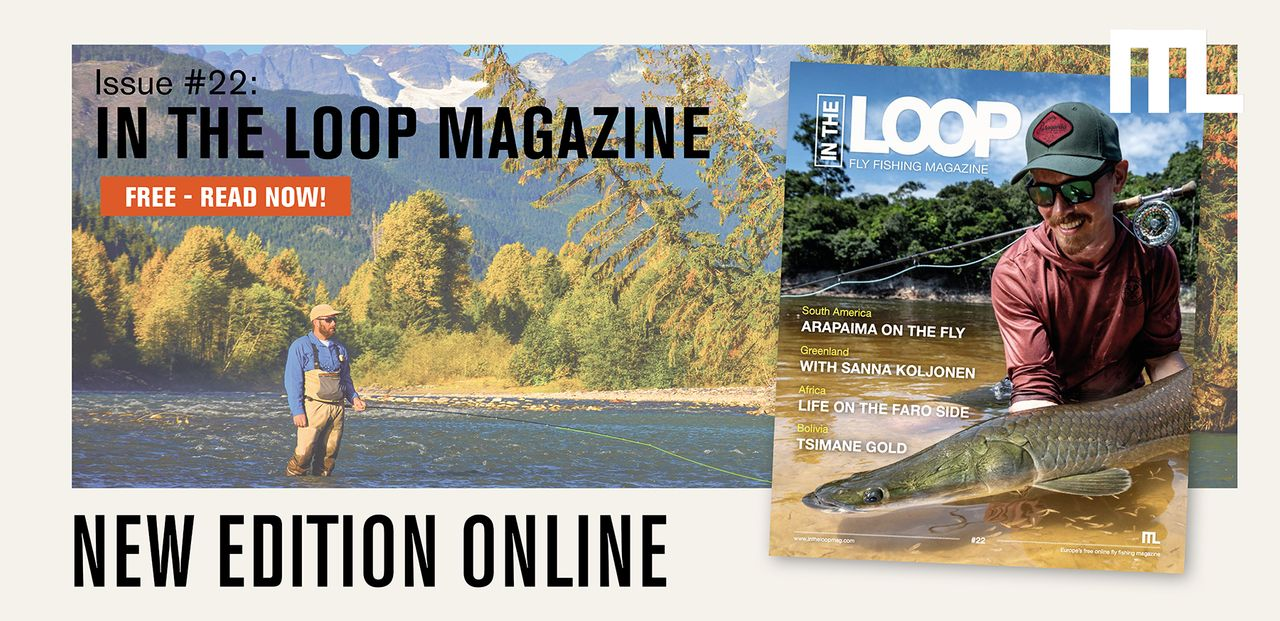 In the Loop - Issue 22