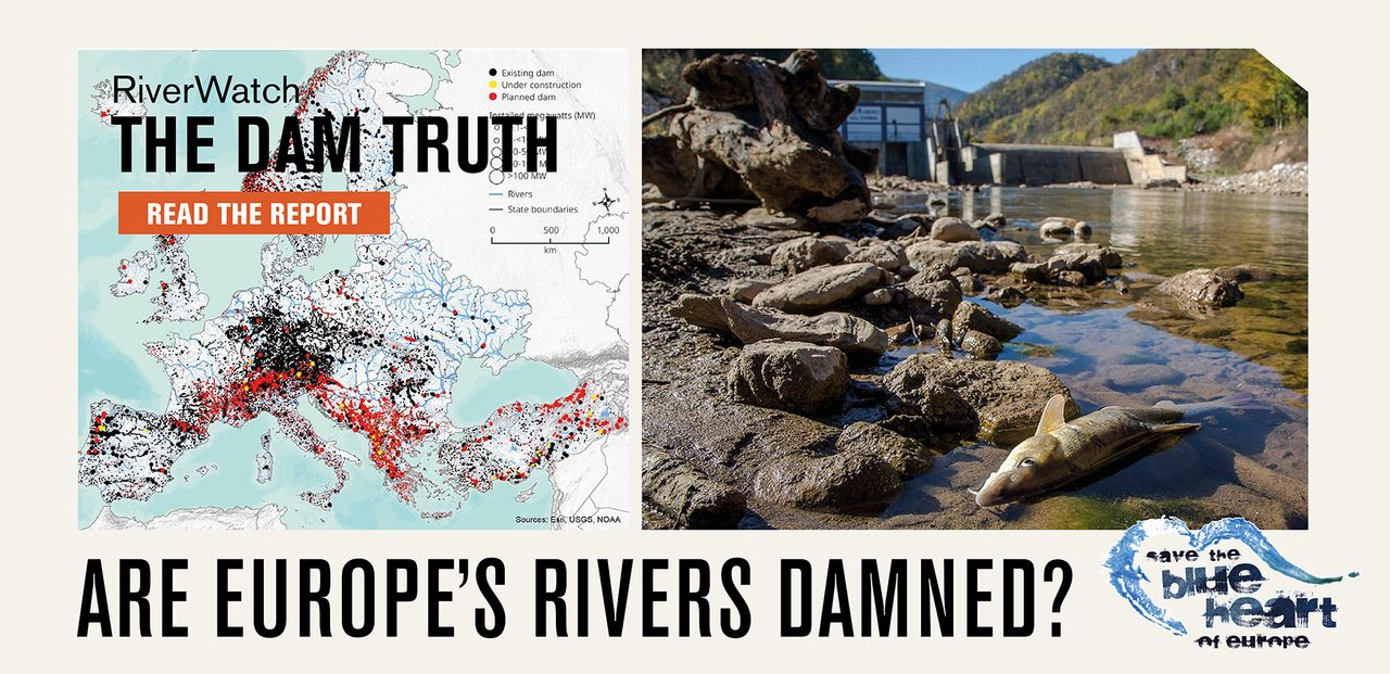 Are Europe's Rivers Damned?