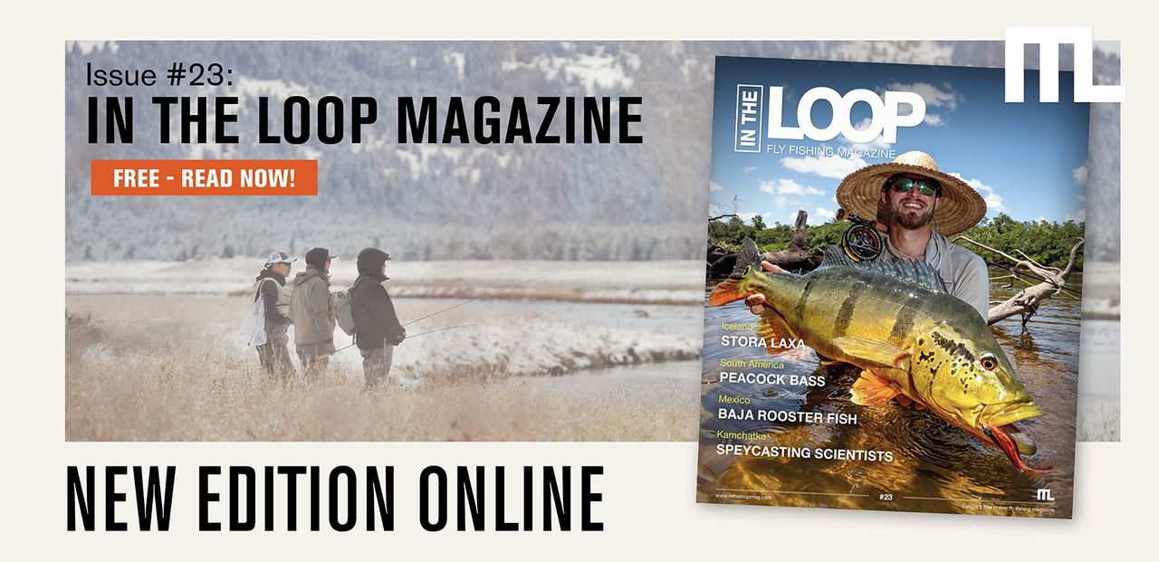 In the Loop Magazine #23