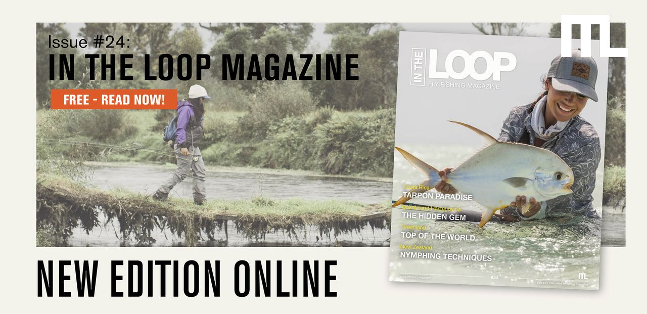 In the Loop Magazine #24