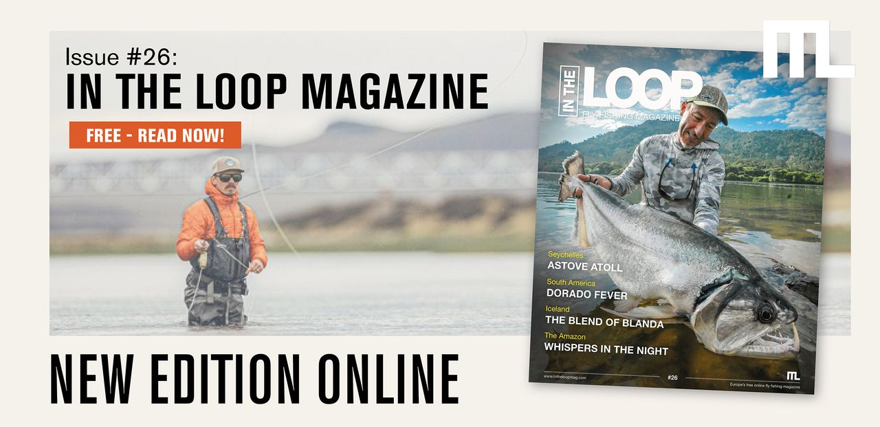In the Loop Magazine - Issue 26