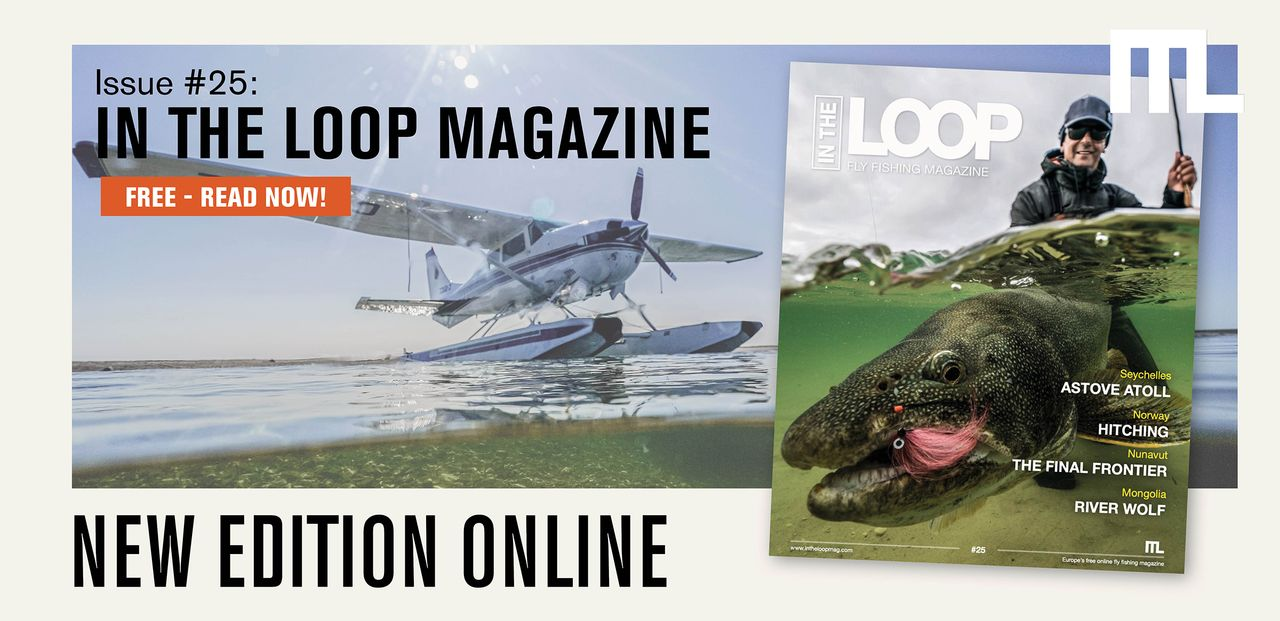 In the Loop Magazine #publishing 25 - Now Online!