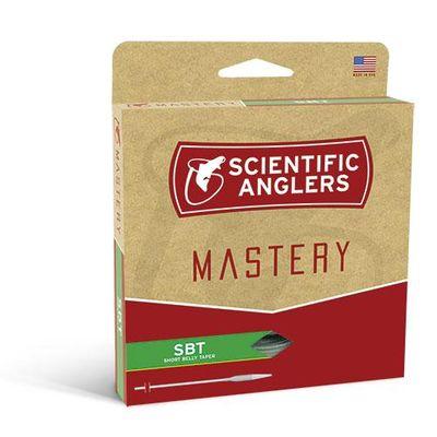 Mastery SBT